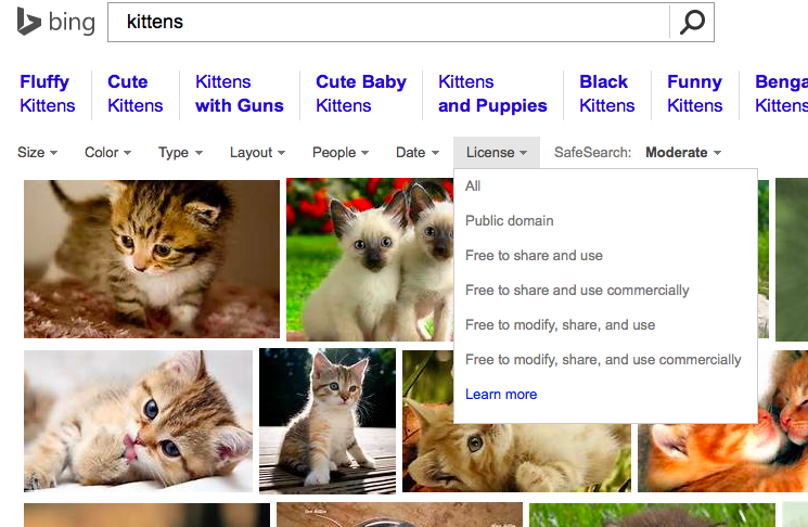 "Bing Image Search for ""Kittens"""